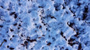 sneeuwaagje