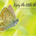 Waar geniet jij van? Enjoy the little things!